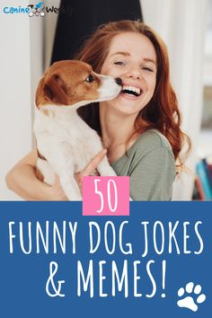 If you're looking for some funny dog jokes and memes, this is where you need to be! We have compiled 50 of the funniest dog jokes and memes to bring a smile to your face. #dogs #funny #dogmemes #dogjokes