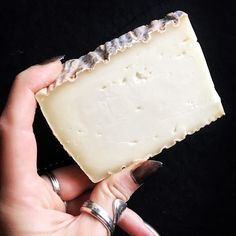 Ever been with a water buffalo cheese? The rumors are true... they're twice as fat as cow cheese  This one tastes like straight sweet cream with a kiss of yeasty funk  { Quadrello di Bufala / Italy }