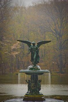 Angel Central Park.  NY, NY