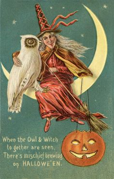 The Witch and the Owl