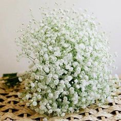 Love Flowers, Beautiful Flowers, Baby Flower, Babies Breath, Gypsophila, Colours, Table Decorations, Plants, People