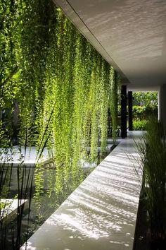 Rapporto con il luogo: introverso. Architettura bio-climatica.