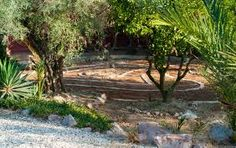 Labirinto entre arvores  http://labirintobr.wordpress.com/