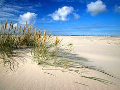 Dune mobili Łeba Polonia Baltic Region, Baltic Sea, Strand, Cool Pictures, Waves, Europe, Tropical Beaches, Half Blood, Sky