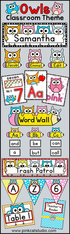 Owl Theme Classroom Decor Value Pack: Create a fun and whimsical owl themed classroom with this quality decor pack. Included in this pack is a word wall, binder covers, bunting, center signs, colors posters, hall passes, job labels, name tags, nameplates, numbers posters, shapes posters and table signs. By Pink Cat Studio.