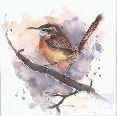 Original painting watercolor bird carolina wren 8x8 by YuliaShe, $87.00