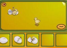 Geboorte van een kuiken - digibord