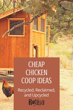 Check out these easy, DIY ideas and designs for your backyard chicken coop! Recycled, reclaimed, and upcycled makes it cheap too! Cheap Chicken Coops, Backyard Chicken Coops, Backyard Farming, Chickens Backyard, Diy Garden Furniture, Diy Garden Projects, Urban Homesteading, Homestead Living, Small Farm