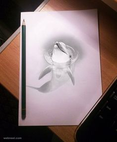 30 Beautiful 3D Drawings - 3D Pencil Drawings and Art works   Read full article: http://webneel.com/3d-drawings-pencil-art   more http://webneel.com/daily   Follow us www.pinterest.com/webneel