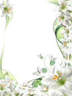 Free Frames, Borders And Frames, Butterfly Pictures, Flower Photos, Flower Frame, Flower Art, Picture Borders, White Lily Flower, Page Borders Design
