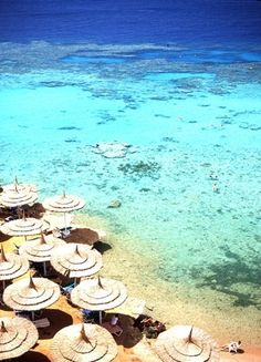 Sharm El Sheikh in Egypt has the most idyllic beaches for newlyweds to spend their honeymoon days! Affordable and reliable airport transfers can take you and your other half straight from the airport to where you need to be. http://www.shuttledirect.com/transfers/Sharm%20El%20Sheikh