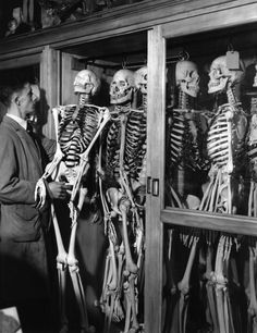 If you've got a lot of skeletons in your closet... you might want to consider losing the glass doors!