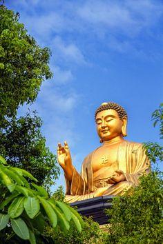 The legacy of Bhante Punnaji's meditation methodology based on the original teachings of the Buddha, the Supernormal Eightfold Way, or Ariya. Lord Vishnu, Lord Shiva, Buddah Statue, Gautama Buddha, Buddhist Art, Yoga, Frame Gallery, Japanese, Places
