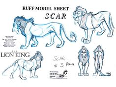 film disney the lion king Character Design traditional production art model sheet Disney Sketches, Disney Drawings, Cartoon Drawings, Animal Drawings, Scar Lion King, The Lion King 1994, Animation Sketches, Animation Reference, Disney Concept Art