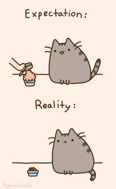 Pusheen the Cat! - Expectation, Reality ;D