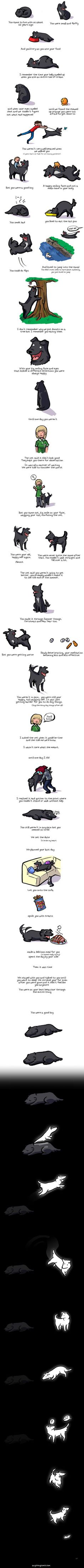 This Heartwarming Illustration Of A Dog's Life