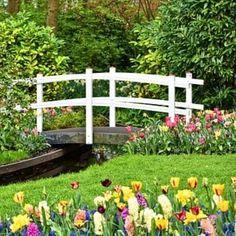 Gardening Magazines, Gardening Tips, Montgomery Blair High School, University Of Maryland, Garden Oasis, Hard Work And Dedication, Garden Guide, Parcs, Edible Garden