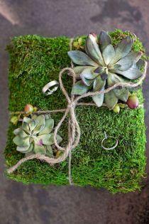 Love the moss