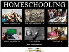 Homeschooling What I Really Do Meme