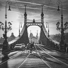 Hungary. On the Liberty Bridge, Budapest, c. 2014 //   by Peter Káni