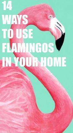 Fun Ways to Use Flamingos in your home decorating! Nice ideas #homedecor #homeideas #flamingo #pinkflamingo