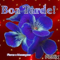 Most popular Picmix Photomontage, Create Yourself, Animation, Popular, Purple, Beauty, Saint Name Day, Good Night, Parents