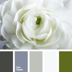 Gamma of muted gray-violet shades is complemented by white and color of greenery. This color combination can be used to design a study, reception, lounge. This color scheme is appropriate for men's and women's business clothes.