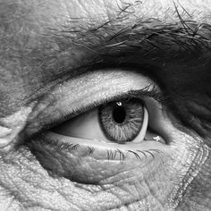 Creative Portrait Photography, Eye Photography, Creative Portraits, Photo Oeil, Wallpaper Nature Flowers, Eye Drawing Tutorials, Hyper Realistic Paintings, Eye Pictures, Aesthetic Eyes
