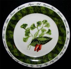 "American Atelier BOUQUET GARNI Salad Plate Ref B Parsley Pepper 7"""