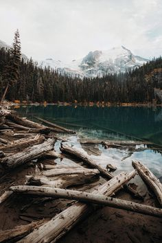 Joffre Lake BC by Rishad Daroowala Life Is Beautiful, Beautiful Places, Beautiful Pictures, Great Places, Joffre Lake, Landscape Photography, Nature Photography, The Great Outdoors, Scenery