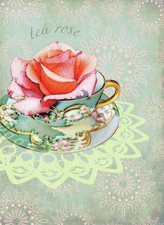 Lara Skinner -tea rose
