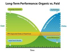 Long-Term Performance: Organic Search vs Paid Search