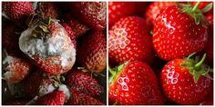 14 Ingenious Hacks to Keep Your Food Fresh Longer