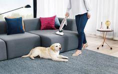 AEG (Stiel-) Handstaubsauger CX7 X FLEXIBILITY Pet Vacuum, Pearl White, 2 In, Couch, Pearls, Amazon, Detail, Animals, Furniture