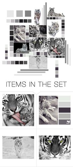 """""""Tiger tiger burning bright"""" by susonwil83 ❤ liked on Polyvore featuring art"""