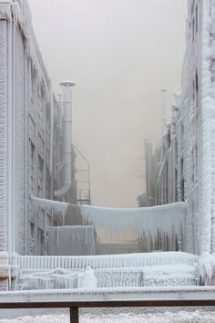 ice wonderland created by the chicago fire department while taming a warehouse fire in subzero weather.