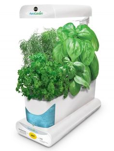 2014 Holiday Gift Guide for Foodies and an AeroGarden #Giveaway