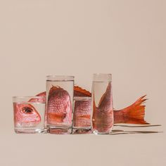 Distorted 'Perspective' Food Still Lifes by Suzanne Saroff | Trendland