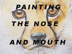 In this video I show you how I paint the nose and mouth of a baby cheetah. You can help support my channel by making a donation or join my Patreon membership. Baby Cheetahs, Make A Donation, Watercolor Paintings, Fine Art, Illustration, Artwork, Artist, Youtube, Inspiration