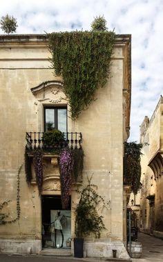 Lecce tetto e balcone fioriti by odino cepernich on 500px
