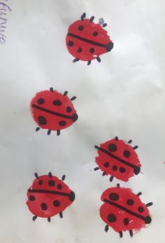 Potato print ladybirds Potato Print, Insect Crafts, Preschool Art Activities, Montessori Toddler, Toddler Art, Baby Room, Stamping, January, Snoopy
