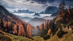 Autumn View by Max Rive