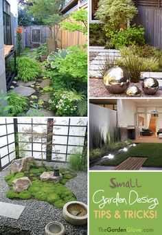 Small Garden Design • Tips and Tricks! Especially good for those of us in California dealing with the drought!