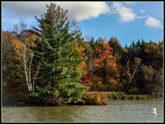 Champlain Canal near Comstock, NY Photo: Kendall McKernon