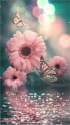 Android Wallpaper Flowers, Flor Iphone Wallpaper, Wallpaper Nature Flowers, Flowery Wallpaper, Butterfly Wallpaper Iphone, Flower Background Wallpaper, Beautiful Flowers Wallpapers, Beautiful Nature Wallpaper, Scenery Wallpaper