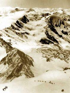 Gruppo Ortles - Alpini in discesa dal Gran Zebrù (3850 m.) sullo sfondo il Cevedale (3764 m.)