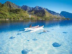 Stingray Snorkler, The Caymans
