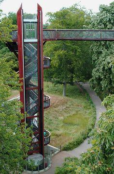 Tree Walk - Kew Gardens - London
