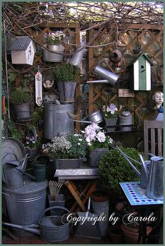 To hang bird houses off my shed wall mural would give it some pop!(Vintage garden)