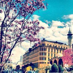 LEBANON, BEIRUT IN SPRING